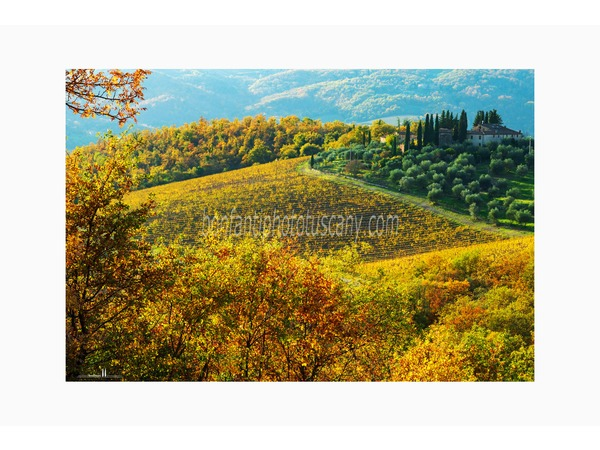Tuscany Photo Tour Chianti vineyards and villages